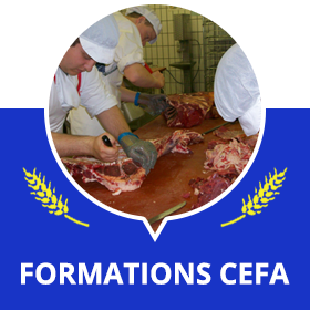 Formations CEFA
